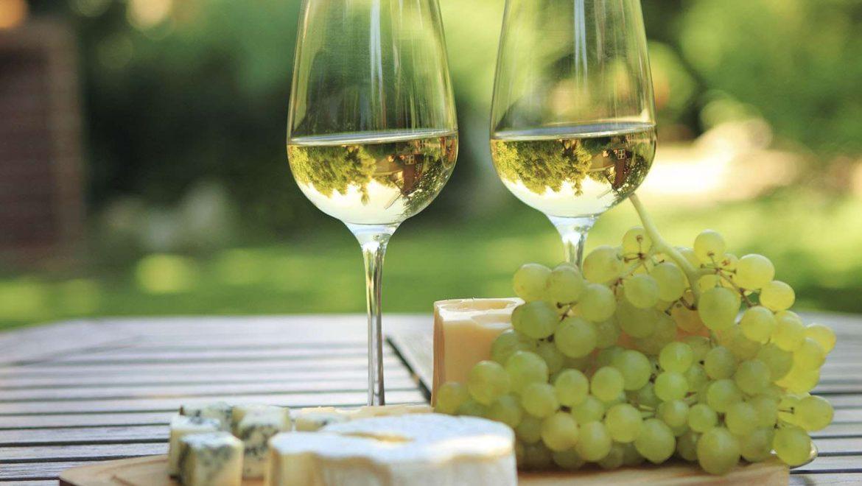 Etichettatura varietale dei nuovi vini del mondo